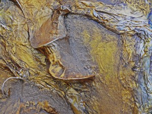 Land of Gold - Detail